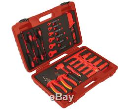25 piece Insulated Tool Kit (Ideal for Electric/Hybrid Vehicles)